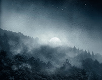 Mist Over Woodlands