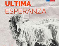 """ULTIMA ESPERANZA"" 2015"