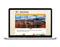 Global Strategy website