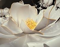 Crème of Jing Cheng | Logo Animation - DIR.ver.