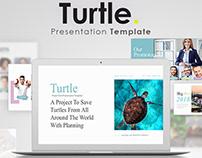 Turtle Power Point Presentation Template