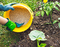 Fertilizer Is, And How It Can Support Your Garden!