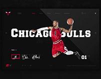 Chicago Bulls (History)