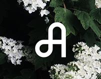 Avid | An Original Typeface