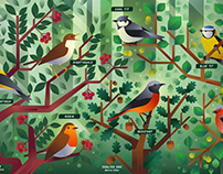 Birds of England, poster & stamps