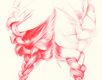 BRAIDED | pencil illustrations