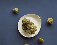 Quebec Gold Marijuana