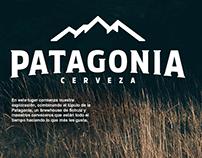Patagonia - Landing Page Redesign