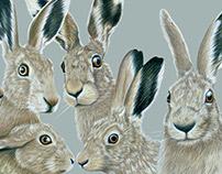 William Morris hares