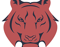 Striker Security Logo and Branding