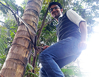 A Novel Coconut Tree Climber