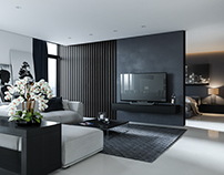Modern style apartment