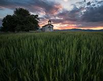 Wheat-field sunsets