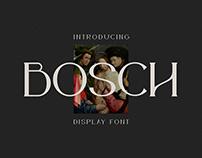 Bosch Display Font
