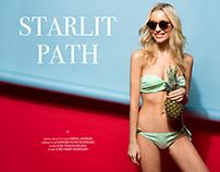 Starlit Path