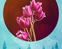 Tulips (Laleler)