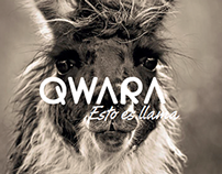 Qwara for Reu