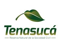 Tenasuca