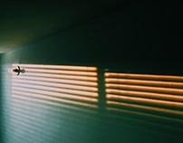 La lumière I