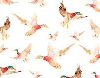 Wild Duck Vol.2