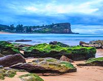 Rocks and Moss at Sydney's Avalon Beach