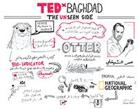 TEDxBaghdad 2015 Sketchnotes - Talks