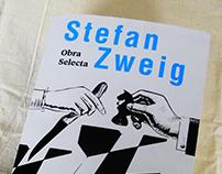 Diseño e ilustracion de portada —Stefan Zweig