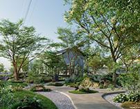 Globeplants bundle 17 : Modern Japanese garden
