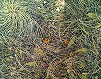 like a grass in a field. Mural/Роспись в интерьере