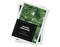 Nature - Multipurpose Magazine Brochure