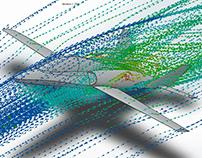 IA110 Aguará Guazú Concept - Flow Simulation