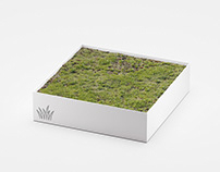 Sale: Meadow Asset for C4D