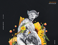 HELIANTHUS - POSTER / ILLUSTRATION CONCEPT