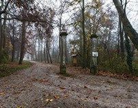 Autumnal rainy views of Monza's Park