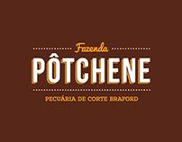 Fazenda Pôtchene