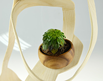 Bent Lamination Project: Plant Holder
