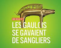 Tumulte Gaulois / Branding