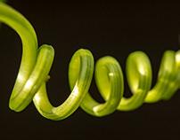 Spirals and Knots