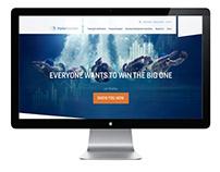 Shipley Associates Website