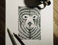 The Bear In Frame