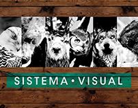 Sistema Visual • Morfología Pereyra II • FADU UBA