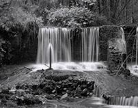 Waterfalls, Farm Animals and Woodland