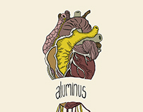 Record sleeve cover- Aluminus