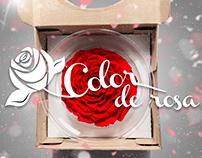 ColorDeRosa/Fotografía de Producto