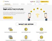 Web Ui/Ux Design TeslaPay