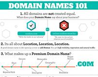 Domain Names 101