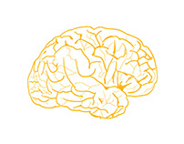 FLAT BRAIN GIF ANIMATED