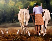 Farming~Meadow