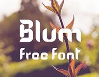 Blum free modular font