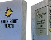 Brightpoint Awards